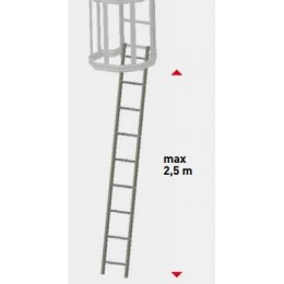 REMOVABLE LADDER WITH HOOKS