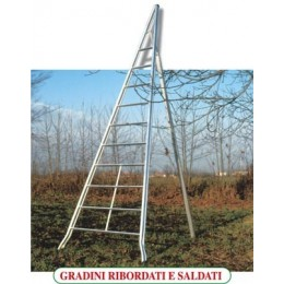 Ladder for agriculture AGRI