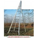Ladder for agriculture AGRI