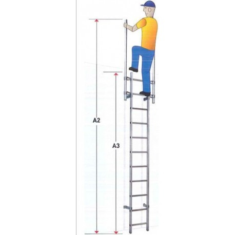 Marine ladder without cage