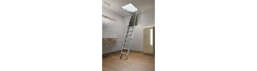 ACI 3 SPECIAL LADDERS